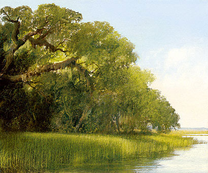 Southern Oak Canopy by C. Ford Riley